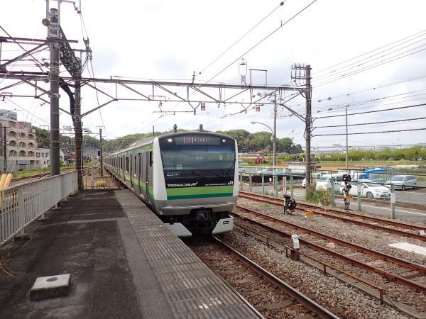 P4230069